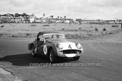 62436 - Allan Moffat Triumph TR3A - Phillip Island 24th June 1962 - Photographer Peter D'Abbs