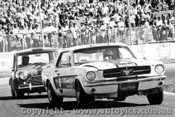 70051  -  Kim Aunger / Daryl King  -  Mustang / Morris Mini - Oran Park 1970 - Photographer David Blanch