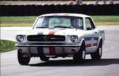 99001  -  Ian  Pete  Geoghegan  -  Mustang  Willowbank  1999