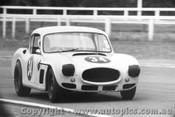 65408 - Bruce Taylor  -  Buckle   -   Warwick Farm 1965