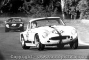67406  -  P. Bolton  -  TVR Grantura - Warwick Farm 1967