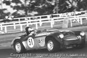 70410  -  Ross Bond   -  Austin Healey 3000 - Warwick Farm 1970