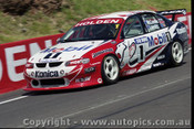 Bathurst FIA 1000 15th November 1999 - Photographer Marshall Cass - Code MC-B99-1043