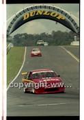 Bathurst FIA 1000 1998 - Photographer Marshall Cass - Code MC-B98-1166