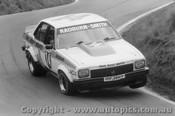 79707  -  R. Radburn / J. Smith  -  Bathurst 1979  3rd Outright   Holden Torana A9X