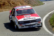 82702  -  Brock / Perkins    Bathurst 1982  1st Outright  Holden Commodore