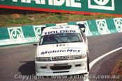 Gardner / B. Jones / M. Preston    Bathurst 1993  3rd Outright  Holden Commodore VP