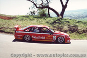 95711  -  A. Olofsson / S. Richards    Bathurst 1995  Holden Commodore VR