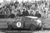 65019 - Peter Manton Morris Cooper S Warwick Farm 1965