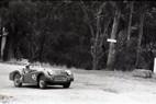 Hepburn Springs Hill Climb 1959 - Photographer Peter D'Abbs - Code 599094
