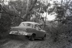 Templestowe HillClimb 1959 - Photographer Peter D'Abbs - Code 599262