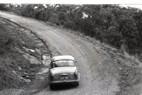 Templestowe HillClimb 1959 - Photographer Peter D'Abbs - Code 599320