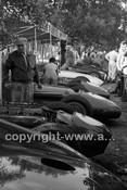 Albert Park 1956 - Photographer Peter D'Abbs - Code 56-AP-063