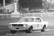 67028 - P. Fahey Ford Mustang - Warwick Farm 1967