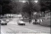 Geelong Sprints 23rd August 1959 -  Photographer Peter D'Abbs - Code G23859-13