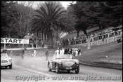 Geelong Sprints 23rd August 1959 -  Photographer Peter D'Abbs - Code G23859-14