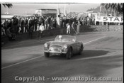 Geelong Sprints 28th August 1960 - Photographer Peter D'Abbs - Code G28860-81