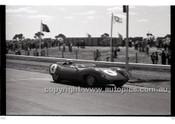 Calder 1965 - Photographer Peter D'Abbs - Code 65-PD-C-608