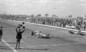 Calder 1966 - Photographer Peter D'Abbs - Code 66-PD-C-018
