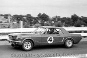 66011 - Norm Beechey - Ford Mustang  - Sandown 1966