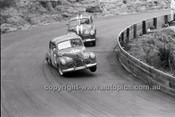 Catalina Park Katoomba - 8th November 1964 - Code 64-C81164- 8