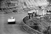 Catalina Park Katoomba - 8th November 1964 - Code 64-C81164- 27