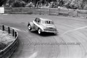 Catalina Park Katoomba - 8th November 1964 - Code 64-C81164- 31