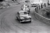 Catalina Park Katoomba - 8th November 1964 - Code 64-C81164- 75