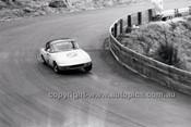 Catalina Park Katoomba - 8th November 1964 - Code 64-C81164- 79