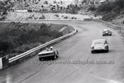 Catalina Park Katoomba - 8th November 1964 - Code 64-C81164- 81