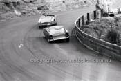 Catalina Park Katoomba - 8th November 1964 - Code 64-C81164- 84