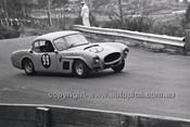 Catalina Park Katoomba - 8th November 1964 - Code 64-C81164- 93