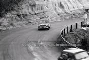 Catalina Park Katoomba - 8th November 1964 - Code 64-C81164- 98