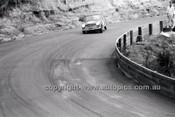 Catalina Park Katoomba - 8th November 1964 - Code 64-C81164- 99