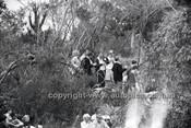 Catalina Park Katoomba - 8th November 1964 - Code 64-C81164- 101