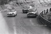 Catalina Park Katoomba - 8th November 1964 - Code 64-C81164- 105