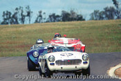 69442 - L. Carne MG Midget / R. Bond Austin Healey / R. Carter Datsun - Oran Park 1969 - Photographer David Blanch