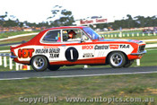 73042 - Peter Brock Holden Torana XU1 - Sandown 250 1973