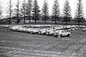 Southern Cross Rally 1975 - Code - 75-T SC61075-027