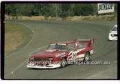 Gary Rogers, Torana - Amaroo Park 25th May 1980 - Code - 80-AMC25580-013