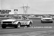 74157 - Peter Finch, Chev Camaro & John Mann, Cortina - Calder 26/51974  - Photographer Peter D'Abbs