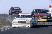82124 - Fred Gibson, Nissan Bluebird - Amaroo Park 1982  - Photographer  Lance J Ruting