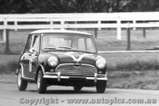 66016 - B. Wright Morris Cooper S - Warwick Farm 1966 - Photographer Lance Ruting