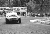 65102 - R. Thorp - AC Cobra - Australian Hill Climb Championships - Lakeland 1965