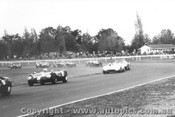 65428 - First Lap of the RAC Trophy Race  R. Thorp  AC Cobra    - Warwick Farm 15/5/1965