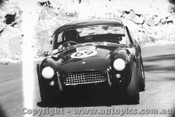 65431 - R. Thorp  AC Cobra  - Catalina Park Katoomba 7/11/1965