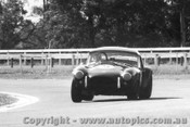 67460 -  R. Thorp  AC Cobra  - Warwick Farm -  14/5/1967 - Photographer Lance Ruting