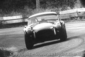 67464 -  R. Thorp  AC Cobra  - Bathurst  -  27/3/1967 - Photographer Lance Ruting