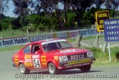 T. Finnigan / R.  Wittig -  Holden Gemini  -  Bathurst 1981