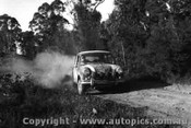66902 - E. Green and J. Keefe - Morris Cooper S - Tiger Rally 1966
